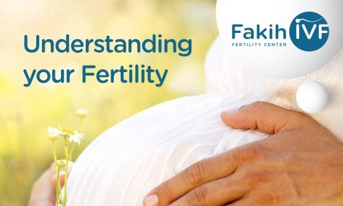 Understanding your Fertility