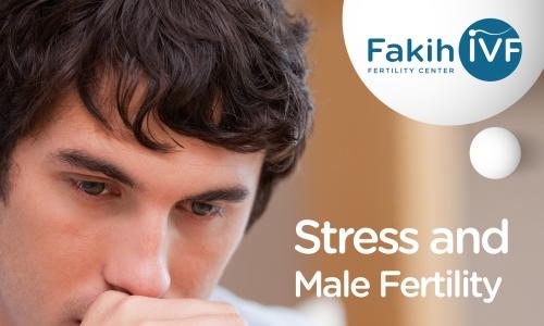 Stress and Male Fertility