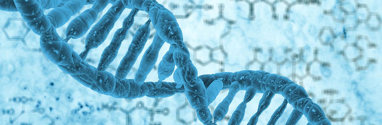 تحليل الكروموسومات على منتجات الحمل بعد الإجهاض
